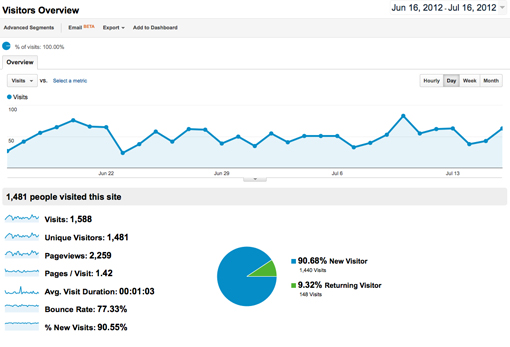 What you first see in Google Analytics