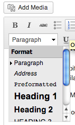 Where to locate the Header facilities in WordPress