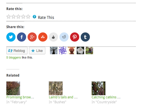 Showing the new sharing and liking facilities in WordPress.com