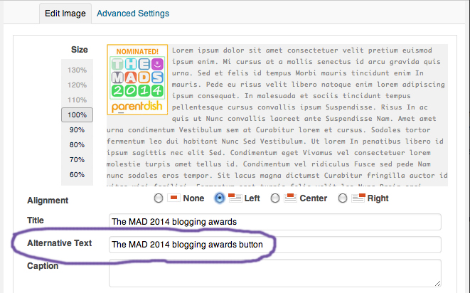 Showing Alt Tag In Image