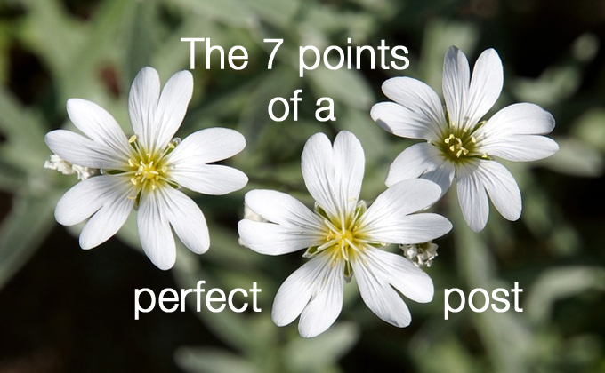 7 points of a perfect post
