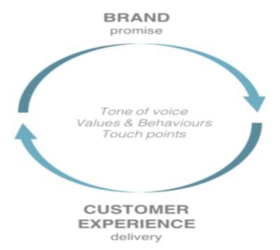 brand vs customer experience